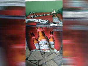freezer-budweiser-envelopamento-paidosadesivos